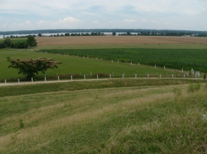 View of the landscape from the hill at Serenity Farms